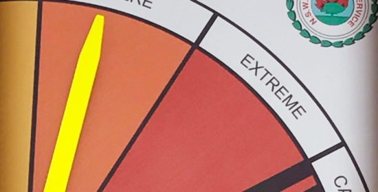 A review of the science behind national fire danger ratings